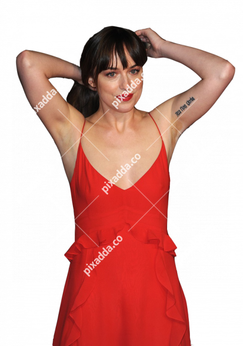dakota johnson transparent picture