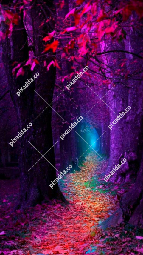 Blue Forest CB Picsart Photo Editing Background