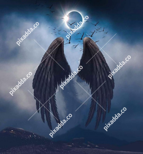 Wings New picsart photo editing background 2021