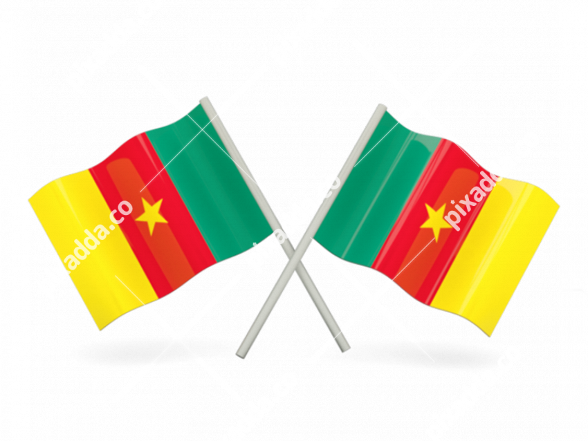 Cameroon Flag PNG File