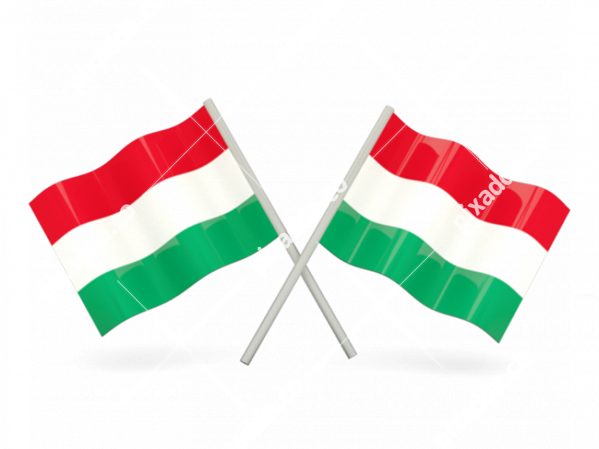 Hungary Flag PNG File