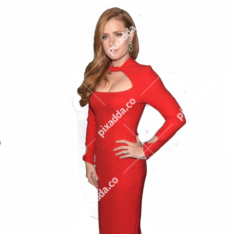 amy adams png transparent image