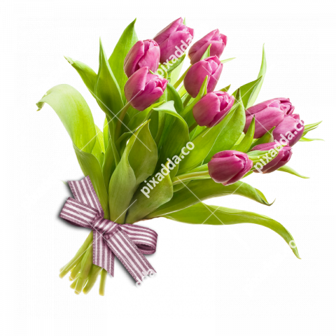Bouquet Flower PNG HD Image