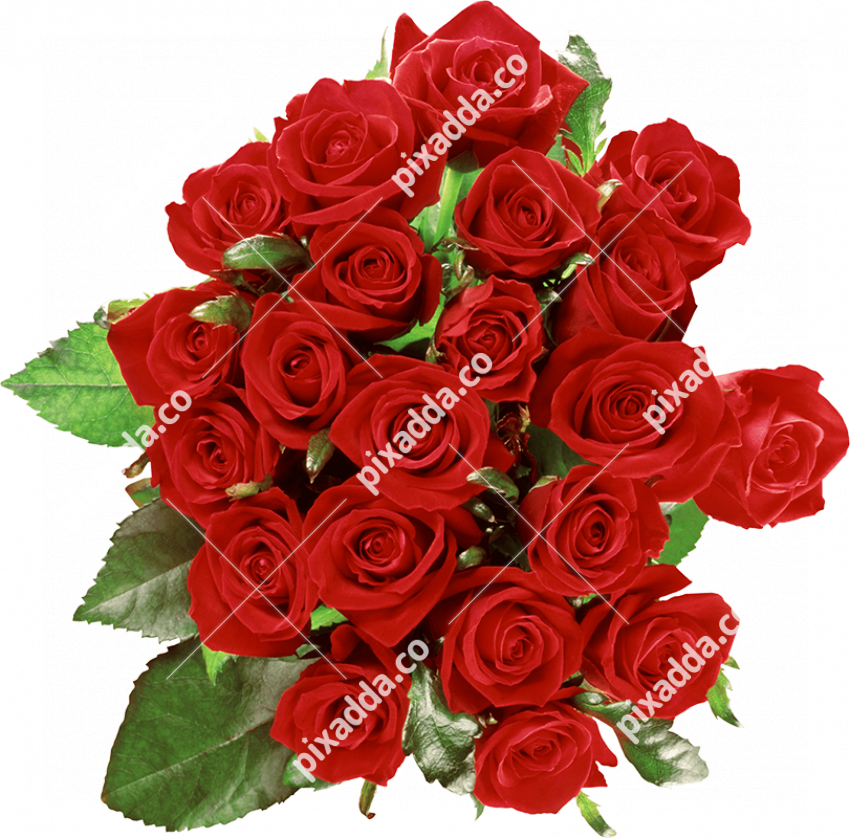 Rose Bouquet PNG Picture