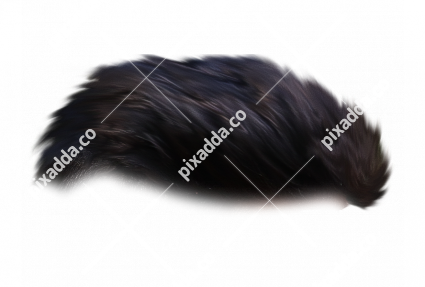 Stylish Men Hair PNG For Picsart Photo Editing 14