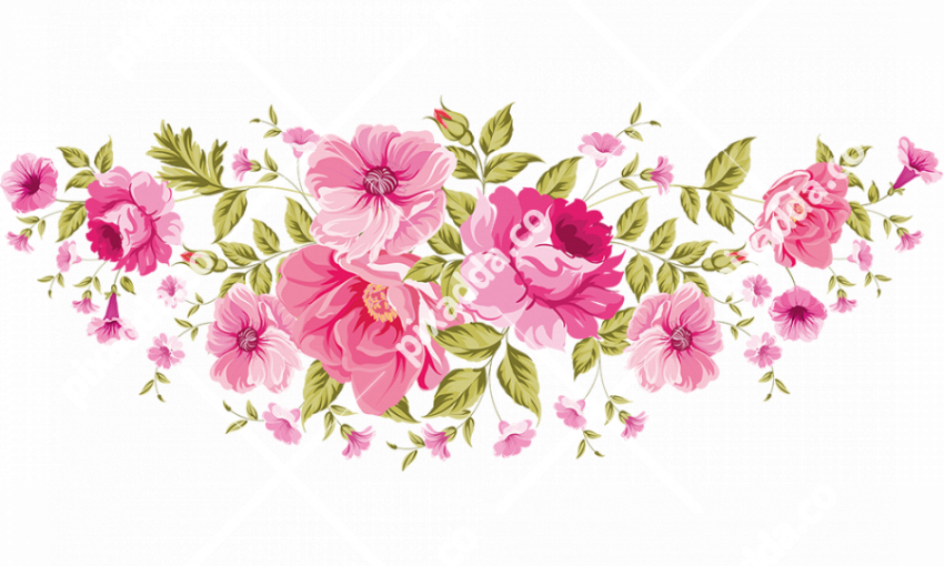 colored floral png image background birthday flowers