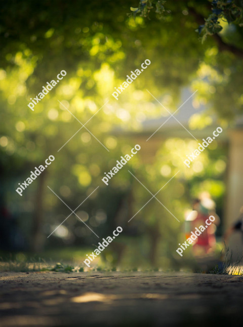 Nature Blur background for Picsart Editing