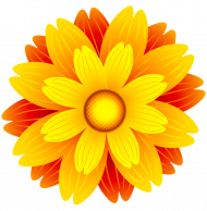 flower crown transparent PNG