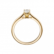 Ring PNG Pic