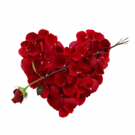 Rose Heart PNG Free Download